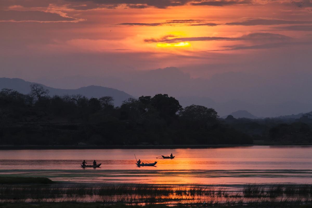 Voyage organisé Sri Lanka