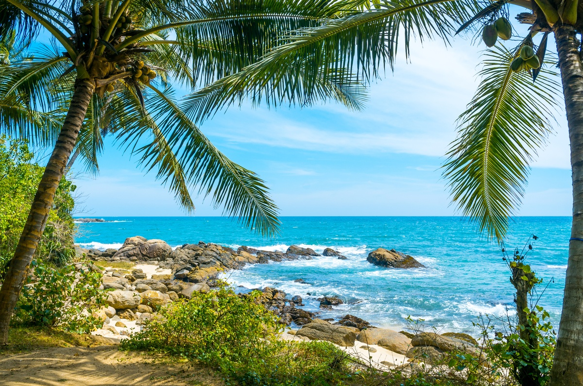 Voyage organisé au Sri Lanka et ses plages